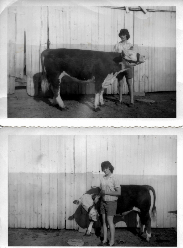 me with 4h calf0002